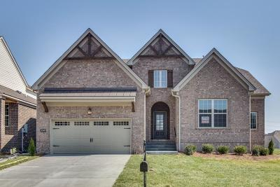Mount Juliet Single Family Home For Sale: 3049 Elliott Drive #91