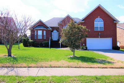 Mount Juliet Single Family Home For Sale: 109 Normandy Dr
