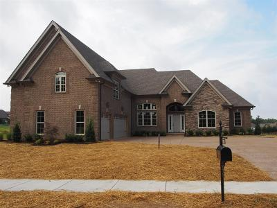 Hendersonville Single Family Home For Sale: 120 Thornwood Place