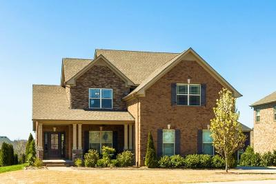 Spring Hill Single Family Home For Sale: 3015 Gari Baldi Way
