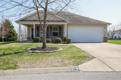 Thompsons Station  Single Family Home Under Contract - Showing: 1511 Danville Cir