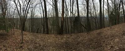 Residential Lots & Land Active - Showing: 265 Backbone Rd