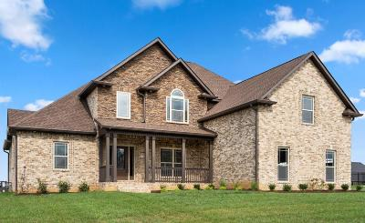 Clarksville Single Family Home For Sale: 65 Hartley Hills