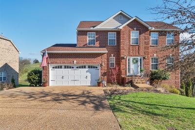 Hendersonville Single Family Home For Sale: 429 Cumberland Hills Dr