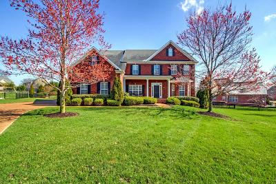 Spring Hill Single Family Home For Sale: 5007 Blarney Ct