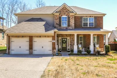 Smyrna Single Family Home For Sale: 3803 Montgomery Way