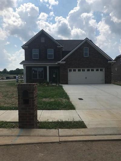 Rutherford County Single Family Home Active - Showing: 3145 Rift Lane