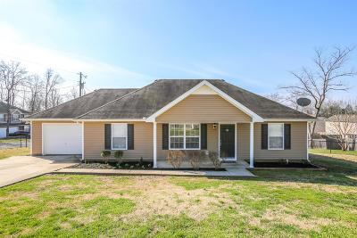 Rutherford County Single Family Home For Sale: 250 Niagra Ln