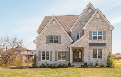 Spring Hill Single Family Home For Sale: 4062 Miles Johnson Pkwy