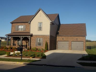 Mount Juliet TN Single Family Home For Sale: $525,000