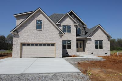 Murfreesboro Single Family Home For Sale: 2518 Armstrong Valley Dr(Lot 3)