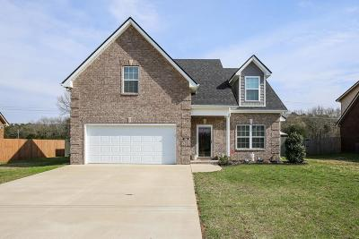 Smyrna Single Family Home Under Contract - Showing: 7707 Ellen Dr