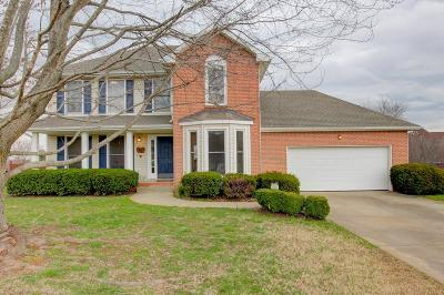 Clarksville Single Family Home For Sale: 412 Pinnacle Pt