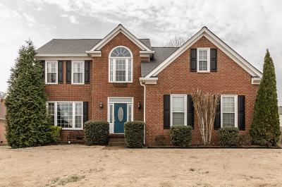 Hendersonville Single Family Home For Sale: 109 Stonehollow Way