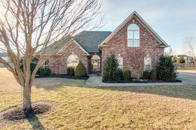 Mount Juliet Single Family Home Under Contract - Showing: 403 Reagan Rd