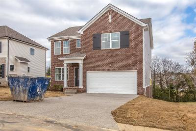 Spring Hill Single Family Home For Sale: 1040 Solomon Ln #317 Summitt
