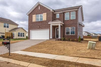 Spring Hill Single Family Home For Sale: 1023 Solomon Ln #246 Summitt