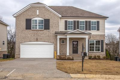Spring Hill Single Family Home For Sale: 1042 Solomon Ln #316hillsboro