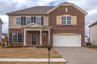 Spring Hill Single Family Home For Sale: 1025 Solomon Ln #245hillsboro