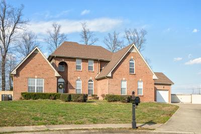 Clarksville TN Single Family Home For Sale: $315,000