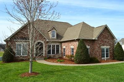 Spring Hill Single Family Home For Sale: 2207 Twin Peaks Ct