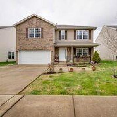 Springfield Single Family Home For Sale: 351 Golfview Ln