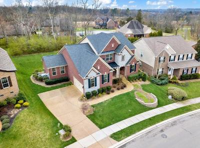 Hendersonville Single Family Home For Sale: 110 Fountain Brooke Dr