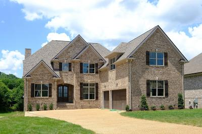 Spring Hill Single Family Home For Sale: 1005 Gadwall Lane (Lot 302)