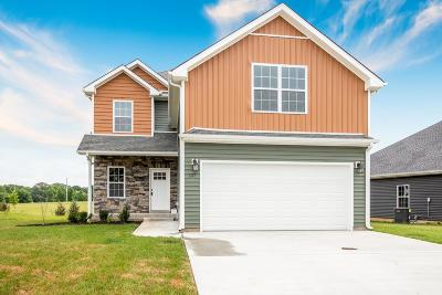 Clarksville TN Single Family Home For Sale: $219,900