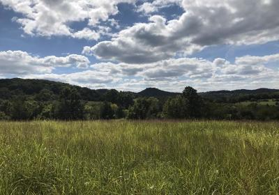 Wilson County Residential Lots & Land For Sale: 2 Coon Branch Rd