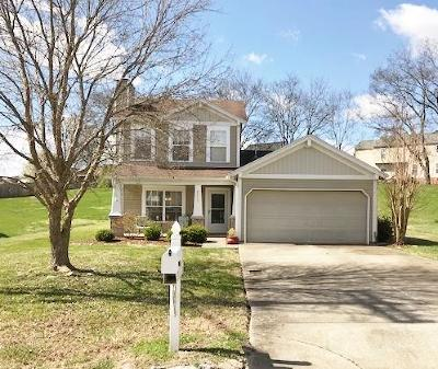 Nashville Single Family Home For Sale: 8233 Boone Trace
