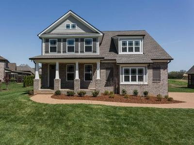 Gallatin Single Family Home For Sale: 1089 Summerstar Cir
