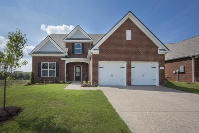 Smyrna Single Family Home For Sale: 5413 High Jump Lot 719