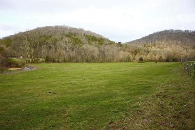 Bradyville Residential Lots & Land For Sale: Burt-Burgen