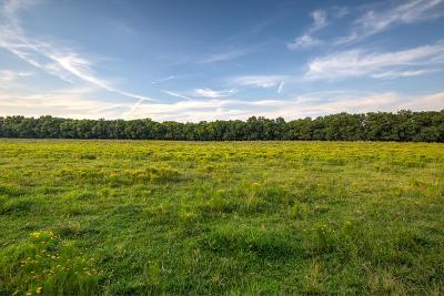 Williamson County Residential Lots & Land For Sale: Trinity Rd. Lot 1