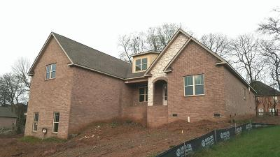 Hendersonville Single Family Home For Sale: 1028 Luxborough Dr