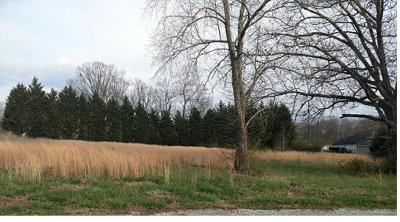 Leoma Residential Lots & Land For Sale: 18 Eli Ct