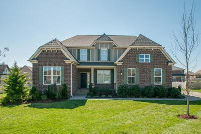 Spring Hill Single Family Home For Sale: 5003 Pinhill Pass