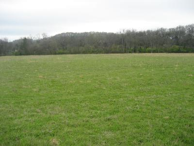Williamson County Residential Lots & Land For Sale: 1699 Thompson Station Rd W