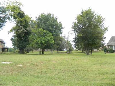 Mount Juliet Residential Lots & Land For Sale: 17 Camille Victoria Ct (Lot17