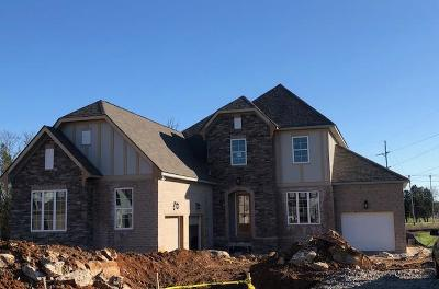 Smyrna Single Family Home For Sale: 7121 Springwater Street