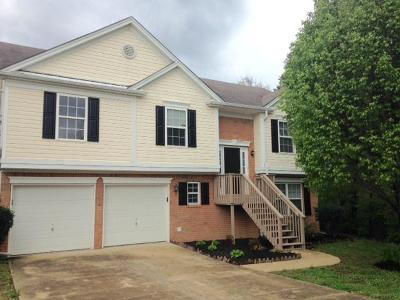 Mount Juliet Single Family Home For Sale: 2128 Ponty Pool Dr