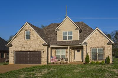Smyrna Single Family Home Under Contract - Showing: 1237 Rimrock Rd