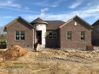 Smyrna Single Family Home For Sale: 7120 Springwater Street