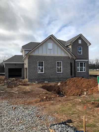 Smyrna Single Family Home For Sale: 7055 Silver Fox Street