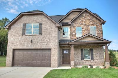 Eagleville Single Family Home For Sale: 620 Eagle View Dr.- #11