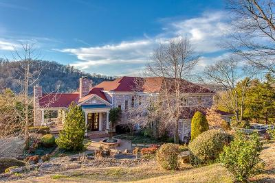 Franklin Single Family Home For Sale: 4646 Peytonsville Rd
