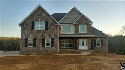 Mount Juliet Single Family Home For Sale: 7127 Couchville Pike