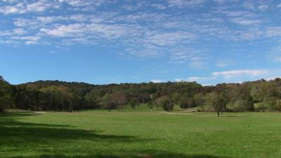 Wilson County Residential Lots & Land For Sale: Swindell Hollow