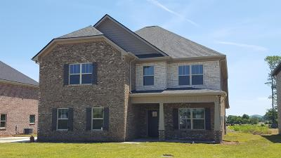 Eagleville Single Family Home For Sale: 613 Eagle View Dr - #16